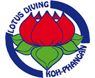 Lotus Dive Resort
