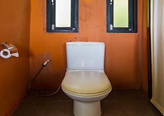 Sea View Villa's toilet
