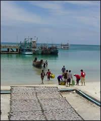 Chaloklum Village - Fishing fresh squid