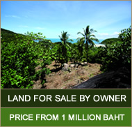 Land For Sale Koh Phangan